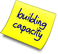phoenix change : building capacity